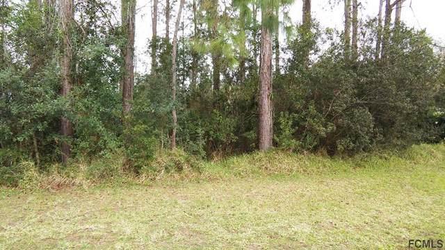64 Kankakee Trail, Palm Coast, FL 32164 (MLS #260238) :: Keller Williams Realty Atlantic Partners St. Augustine