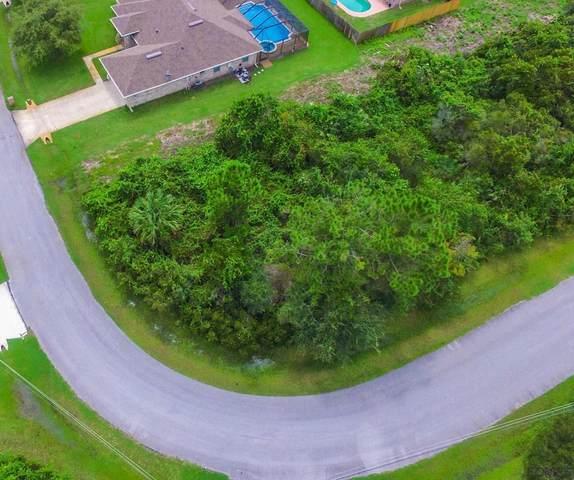 79 La Mancha Dr, Palm Coast, FL 32137 (MLS #260315) :: RE/MAX Select Professionals