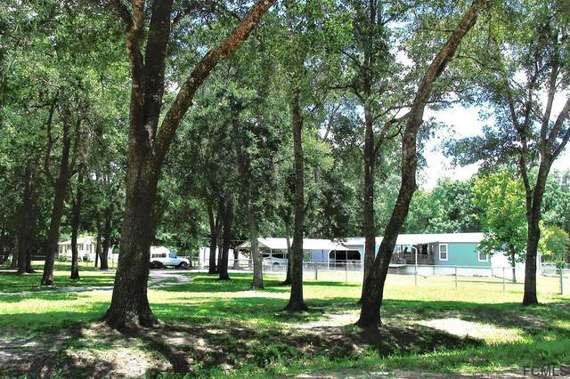 4821 Canal Avenue, Bunnell, FL 32110 (MLS #260537) :: RE/MAX Select Professionals