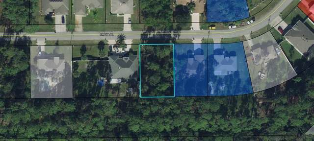 62 Smith Trl, Palm Coast, FL 32164 (MLS #260600) :: Dalton Wade Real Estate Group