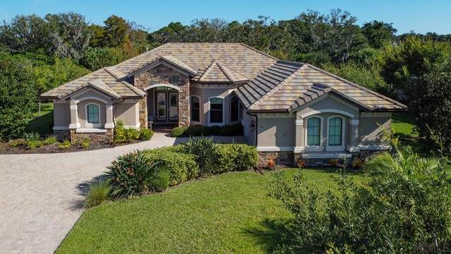 19 Blue Oak Lane, Palm Coast, FL 32137 (MLS #260601) :: The DJ & Lindsey Team