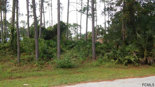 29 Porcupine Dr, Palm Coast, FL 32164 (MLS #261889) :: The DJ & Lindsey Team