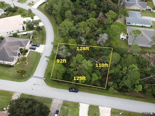 2 Falls Place, Palm Coast, FL 32137 (MLS #261891) :: RE/MAX Select Professionals