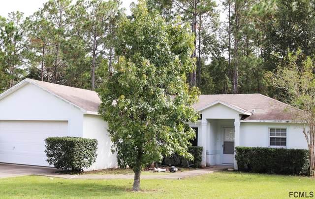 87 Panorama Drive, Palm Coast, FL 32164 (MLS #261900) :: The DJ & Lindsey Team