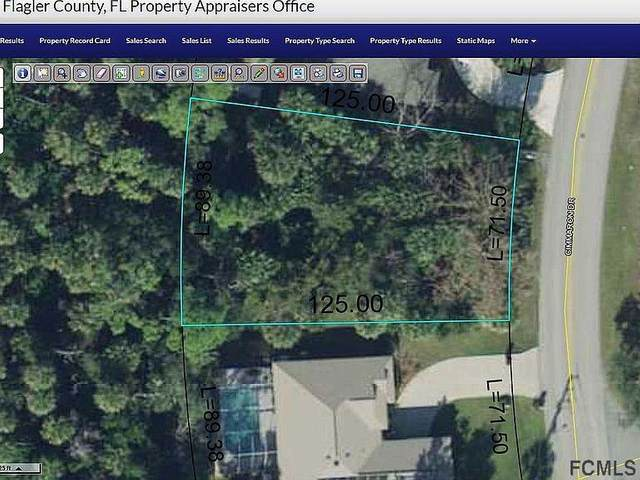 65 Cimmaron Dr, Palm Coast, FL 32137 (MLS #261945) :: Noah Bailey Group