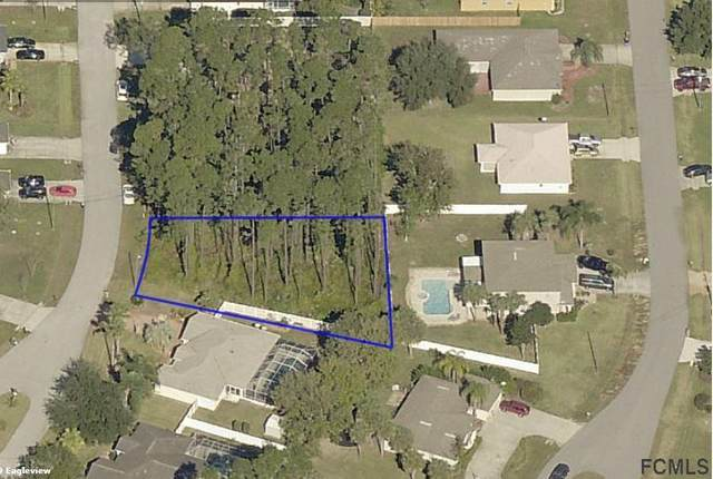18 Emerald Lane, Palm Coast, FL 32164 (MLS #261983) :: Noah Bailey Group