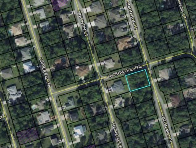 2 Union Mill Pl, Palm Coast, FL 32164 (MLS #262076) :: The DJ & Lindsey Team