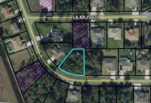 39 Ulysses Trl, Palm Coast, FL 32164 (MLS #262080) :: RE/MAX Select Professionals