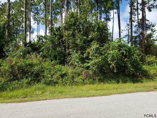 17 Edward Dr, Palm Coast, FL 32164 (MLS #262181) :: Noah Bailey Group