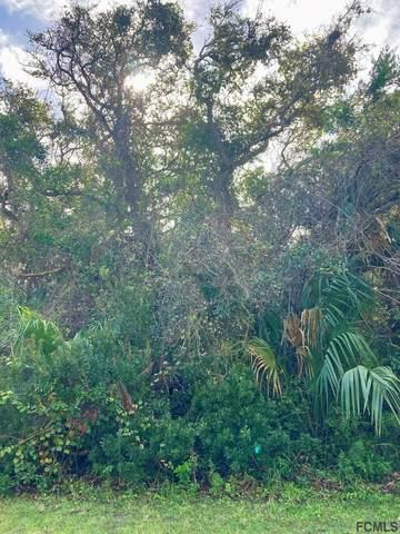22 Deerwood St, Palm Coast, FL 32137 (MLS #262911) :: Keller Williams Realty Atlantic Partners St. Augustine