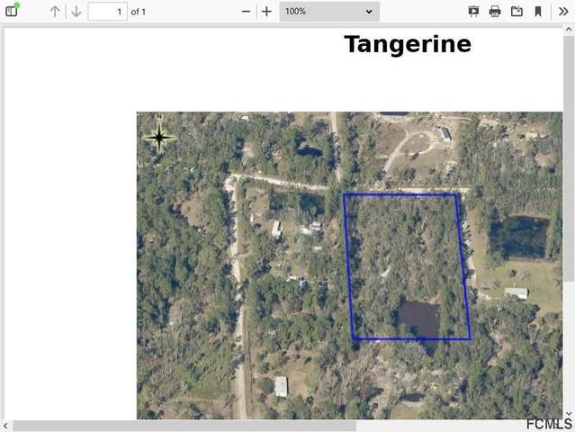 n/a Tangerine Ave, Bunnell, FL 32110 (MLS #262959) :: RE/MAX Select Professionals