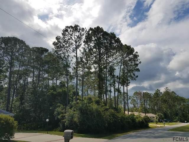 11 Zonal Court, Palm Coast, FL 32164 (MLS #263005) :: The DJ & Lindsey Team