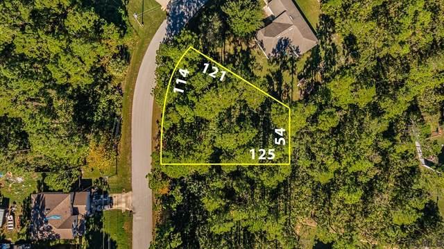 7 Secretary Trail, Palm Coast, FL 32164 (MLS #263073) :: Noah Bailey Group