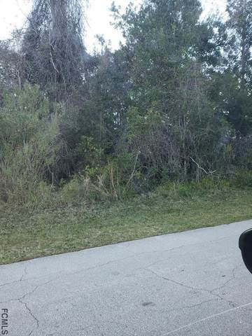 164 Frankford Ln, Palm Coast, FL 32137 (MLS #263118) :: The DJ & Lindsey Team