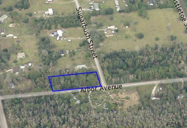 1728 Sugarbush St, Bunnell, FL 32110 (MLS #263689) :: Noah Bailey Group