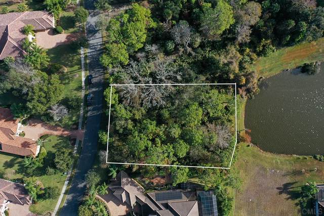 227 Willow Oak Way, Palm Coast, FL 32137 (MLS #263768) :: Dalton Wade Real Estate Group