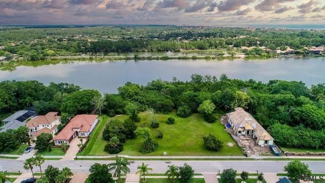 13 Emerald Lake Court, Palm Coast, FL 32136 (MLS #263873) :: Dalton Wade Real Estate Group