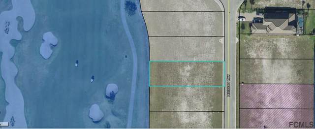 348 Hibiscus Way, Palm Coast, FL 32137 (MLS #263883) :: Dalton Wade Real Estate Group