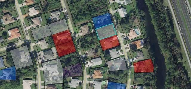 34 Price Lane, Palm Coast, FL 32164 (MLS #263923) :: Dalton Wade Real Estate Group