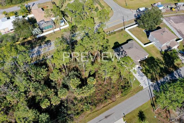 25 Riviere Lane, Palm Coast, FL 32164 (MLS #263998) :: Keller Williams Realty Atlantic Partners St. Augustine