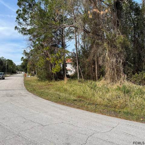 53 Kathleen Trail, Palm Coast, FL 32164 (MLS #264029) :: Dalton Wade Real Estate Group