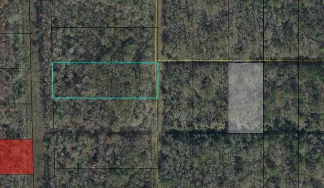 00 East Deep Creek Blvd, Bunnell, FL 32110 (MLS #264045) :: Dalton Wade Real Estate Group