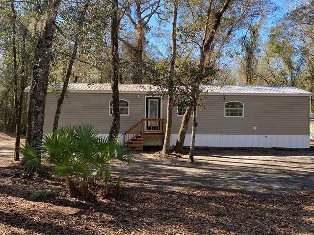 10705 Kirchherr Avenue, Hastings, FL 32145 (MLS #264104) :: RE/MAX Select Professionals