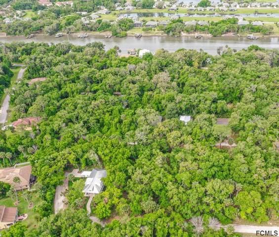 8 N Hammock Preserve Ln, Palm Coast, FL 32137 (MLS #264586) :: NextHome At The Beach II