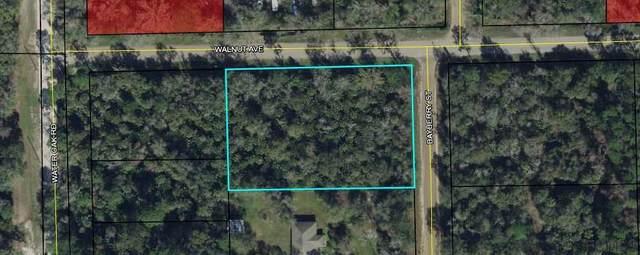 6615 Walnut Avenue, Bunnell, FL 32110 (MLS #264700) :: RE/MAX Select Professionals