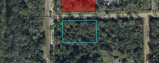 6665 Walnut Avenue, Bunnell, FL 32110 (MLS #264702) :: RE/MAX Select Professionals