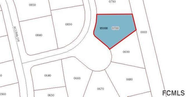 4013 Calusa Lane, Ormond Beach, FL 32174 (MLS #264805) :: Olde Florida Realty Group