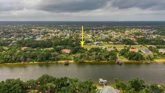 73 Old Oak Dr S, Palm Coast, FL 32137 (MLS #265082) :: The DJ & Lindsey Team