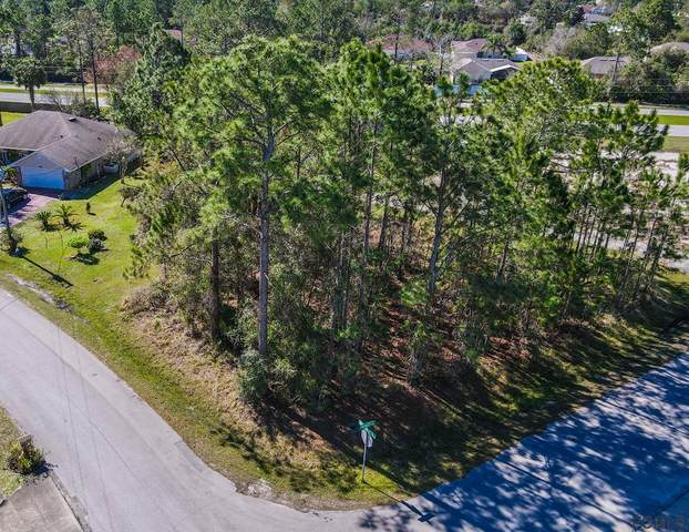 1 Wheel Place, Palm Coast, FL 32164 (MLS #265389) :: Olde Florida Realty Group