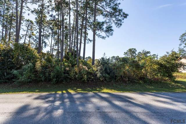 35 Weymouth Lane, Palm Coast, FL 32164 (MLS #265540) :: RE/MAX Select Professionals