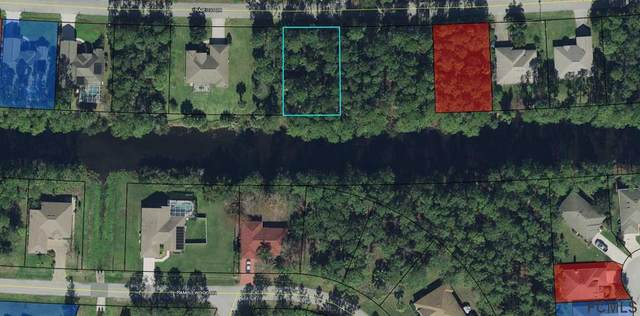 40 Raleigh Drive, Palm Coast, FL 32164 (MLS #266369) :: RE/MAX Select Professionals