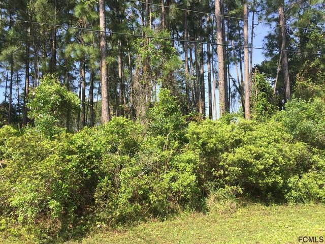 31 Princess Dolores Ln, Palm Coast, FL 32164 (MLS #266497) :: RE/MAX Select Professionals