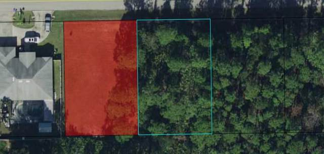 74 Secretary Trail, Palm Coast, FL 32164 (MLS #266577) :: Olde Florida Realty Group