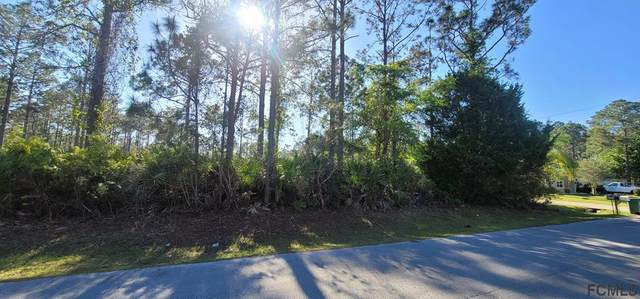 25 Seward Trail E, Palm Coast, FL 32164 (MLS #266589) :: Olde Florida Realty Group
