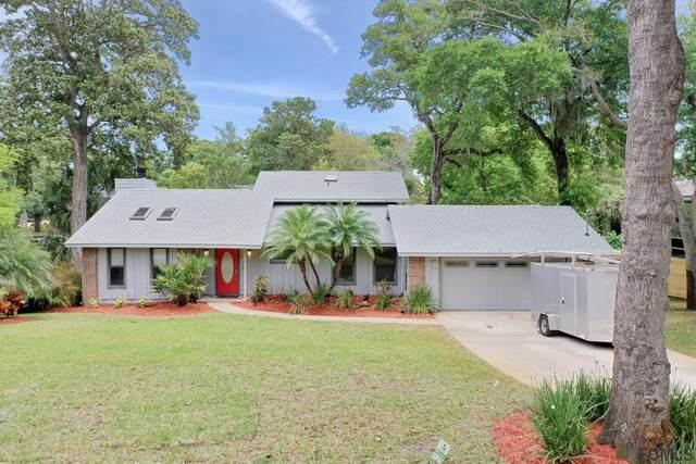 15 Raintree Lane, Ormond Beach, FL 32174 (MLS #266802) :: The DJ & Lindsey Team