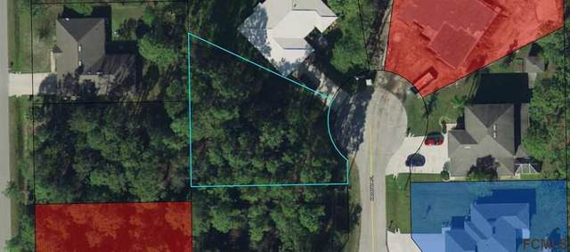 15 Karanda Pl, Palm Coast, FL 32164 (MLS #266862) :: Olde Florida Realty Group