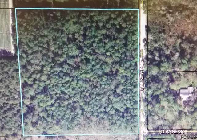 0 Cr 75, Bunnell, FL 32110 (MLS #266875) :: Olde Florida Realty Group