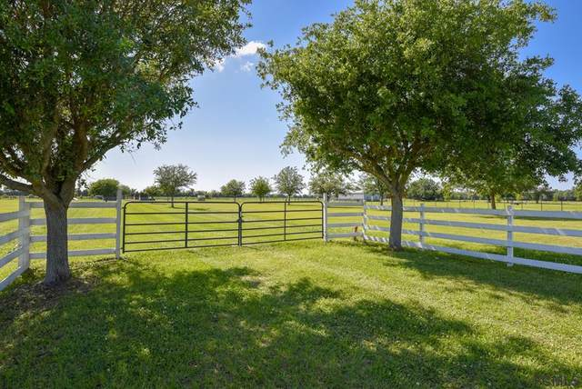 556 County Rd 95, Bunnell, FL 32110 (MLS #266922) :: Endless Summer Realty