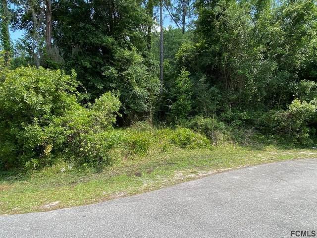 11 Zebra Ct, Palm Coast, FL 32164 (MLS #267217) :: Olde Florida Realty Group