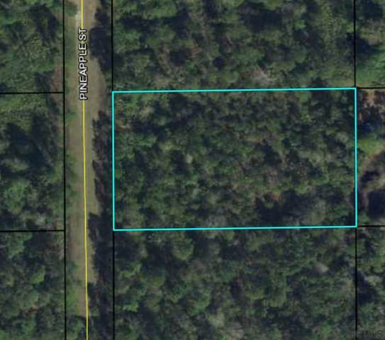 2921 Pineapple St, Bunnell, FL 32110 (MLS #267354) :: Noah Bailey Group