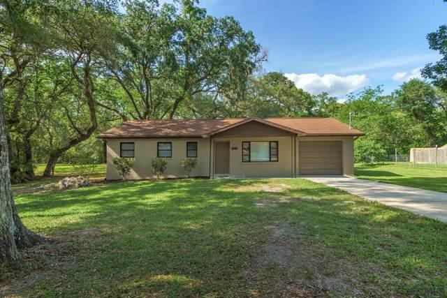 5215 Azalea Cir, Ridge Manor, FL 33523 (MLS #267390) :: Endless Summer Realty