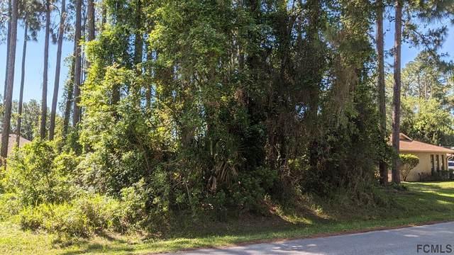 124 Breeze Hill Lane, Palm Coast, FL 32137 (MLS #267495) :: Olde Florida Realty Group