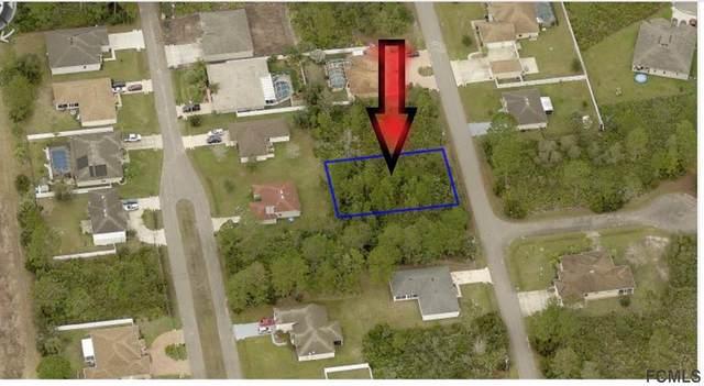 10 Seriema Place, Palm Coast, FL 32164 (MLS #267499) :: Olde Florida Realty Group