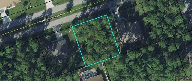 22 Burning Sands Lane, Palm Coast, FL 32137 (MLS #267503) :: Olde Florida Realty Group