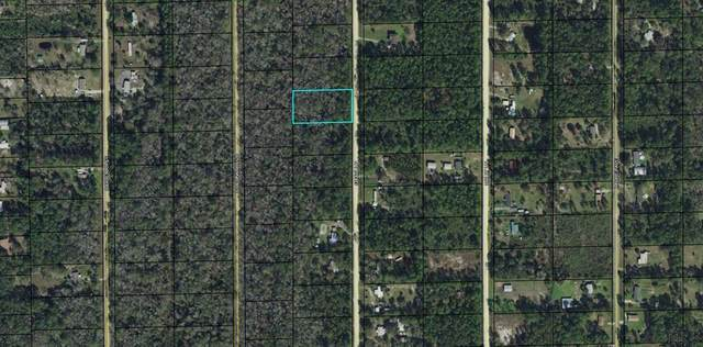 1666 Guava Lane, Bunnell, FL 32110 (MLS #267523) :: Olde Florida Realty Group