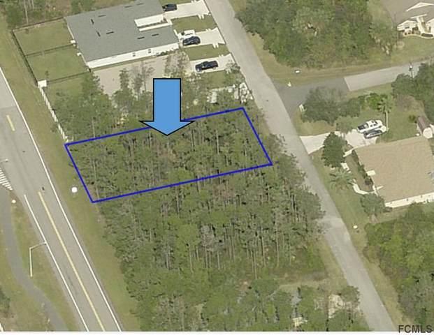 17 Clementon Lane, Palm Coast, FL 32137 (MLS #267532) :: Endless Summer Realty